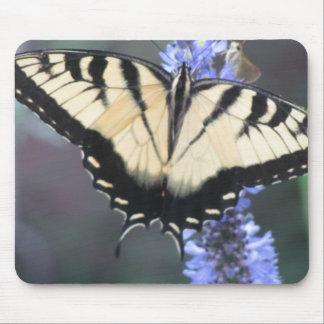 mariposa en la flor alfombrillas de ratones