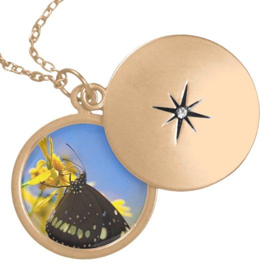 Mariposa en la flor amarilla collar dorado