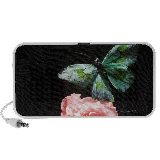 Mariposa en la flor laptop altavoces