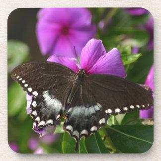 Mariposa en la flor posavasos de bebidas