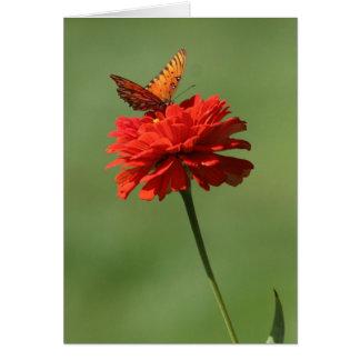 Mariposa en la flor tarjeta de felicitación