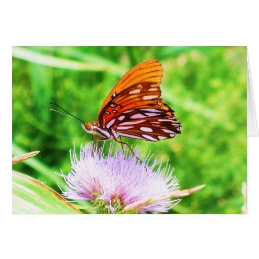 Mariposa en la flor tarjeta pequeña