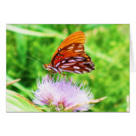Mariposa en la flor tarjeton