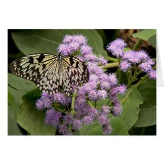 Mariposa en la floración tarjeta de felicitación
