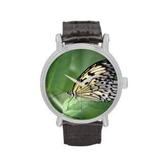 Mariposa en la hoja reloj