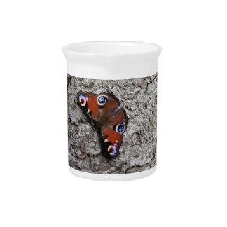 Mariposa en la jarra del árbol