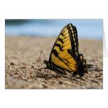 Mariposa en la playa tarjetón
