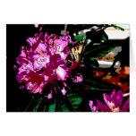 Mariposa en la tarjeta de Rhododendrum