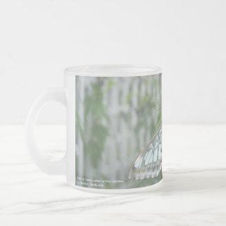 Mariposa en la ventana del invernadero, jardines taza de café esmerilada