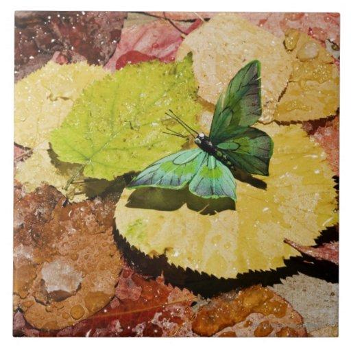 Mariposa en las hojas mojadas del otoño azulejo cuadrado grande