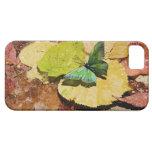 Mariposa en las hojas mojadas del otoño funda para iPhone SE/5/5s