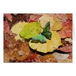 Mariposa en las hojas mojadas del otoño tarjeta de felicitación