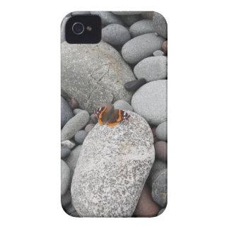 Mariposa en las rocas iPhone 4 fundas