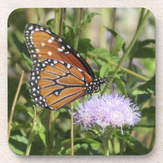 Mariposa en los prácticos de costa púrpuras de la  posavaso