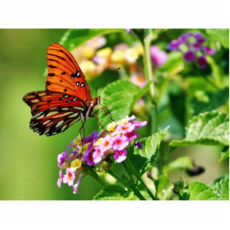Mariposa en Luisiana Fotoescultura Vertical