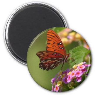 Mariposa en Luisiana Imán Redondo 5 Cm