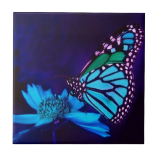 Mariposa en luz azul azulejo cuadrado pequeño