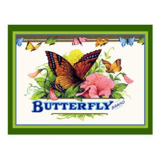 Mariposa en petunias tarjeta postal
