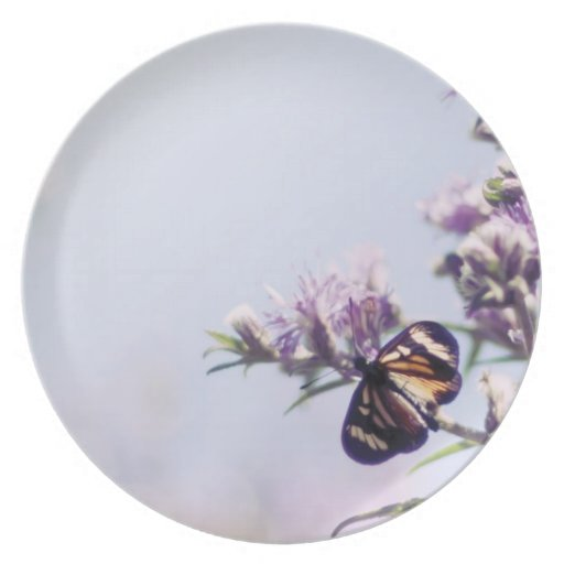 Mariposa en rama púrpura del flor plato