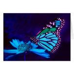 Mariposa en tarjeta ligera azul del amor