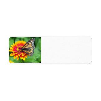 Mariposa en una flor etiquetas de remite