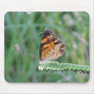 Mariposa en una mala hierba Mousepad