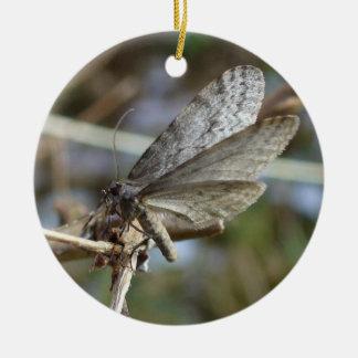 Mariposa en una ramita adorno navideño redondo de cerámica