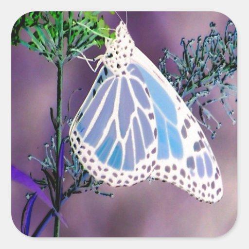 Mariposa enrrollada y salvaje pegatinas cuadradas personalizadas