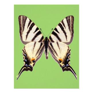 Mariposa escasa aislada de Swallowtail Plantillas De Membrete
