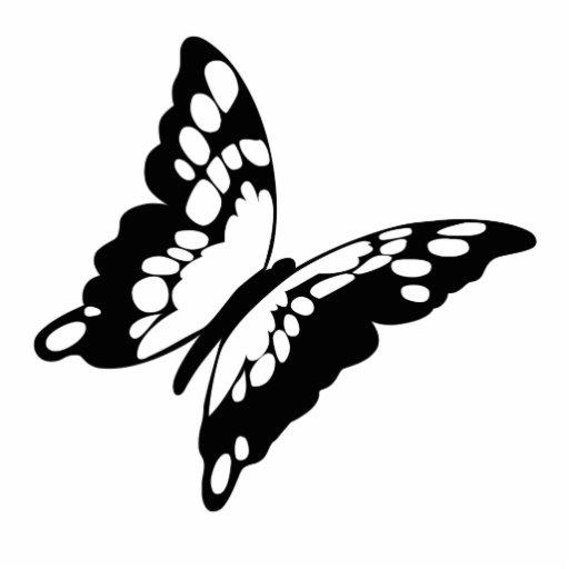 Mariposa Esculturas Fotograficas
