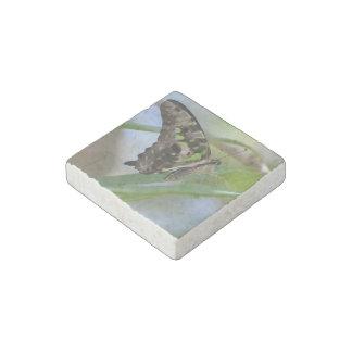 Mariposa espectacular imán de piedra