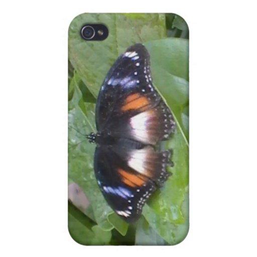 Mariposa estimada iPhone 4 carcasas