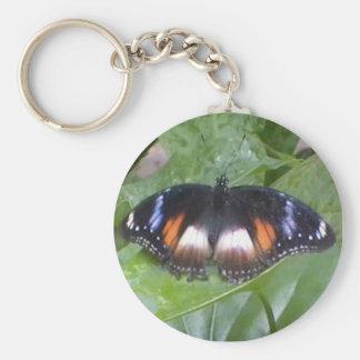 Mariposa estimada llaveros personalizados
