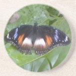 Mariposa estimada posavasos personalizados