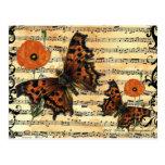 Mariposa europea con la postal de la amapola