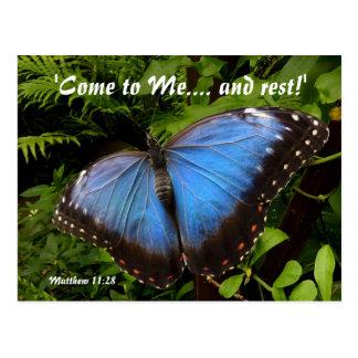 Mariposa exótica azul tarjeta postal