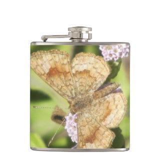 Mariposa fatal de Metalmark