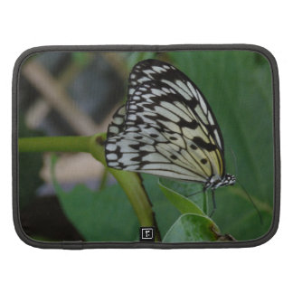 Mariposa Planificador