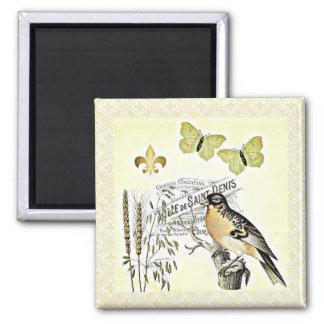Mariposa francesa Fleur del pájaro del collage del Imán Cuadrado