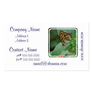 Mariposa fresca plantilla de tarjeta personal