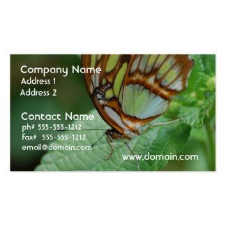 Mariposa fresca plantillas de tarjetas de visita