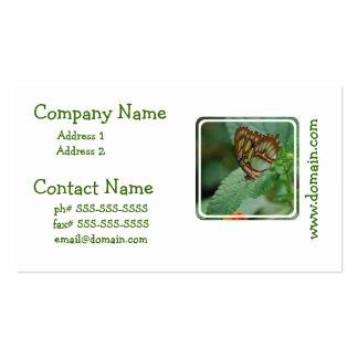 Mariposa fresca tarjeta de visita
