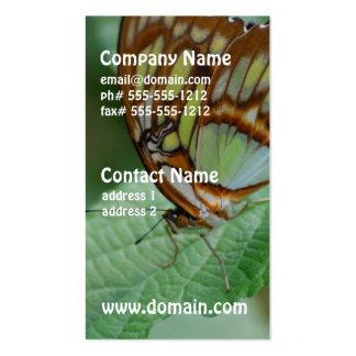 Mariposa fresca tarjetas de visita