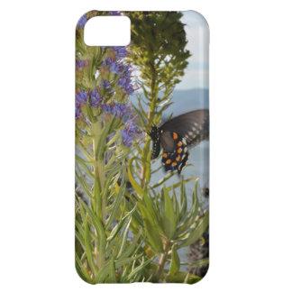 Mariposa Funda Para iPhone 5C
