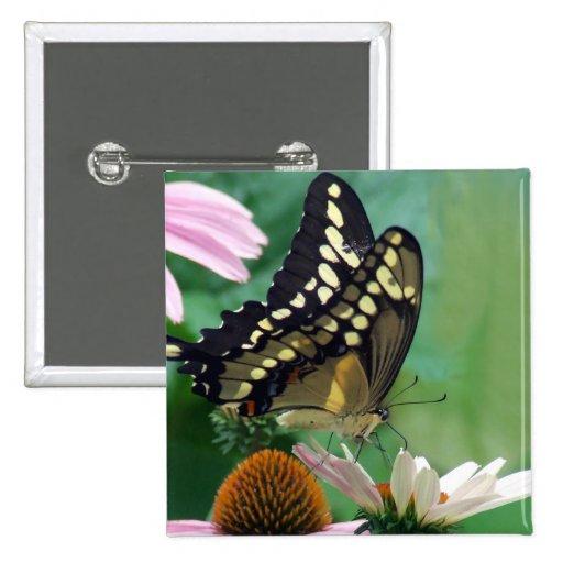 Mariposa gigante de Swallowtail en las flores Pin Cuadrada 5 Cm