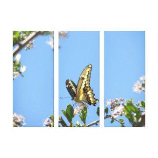 Mariposa gigante de Swallowtail Impresión En Lona