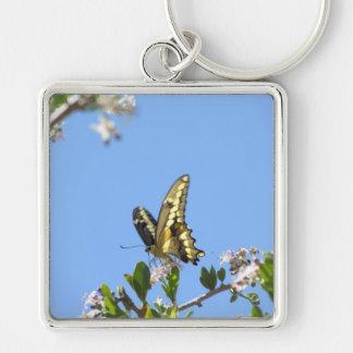 Mariposa gigante de Swallowtail Llaveros Personalizados