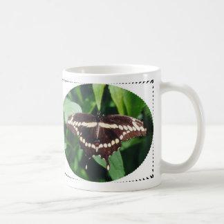 Mariposa gigante de Swallowtail Taza