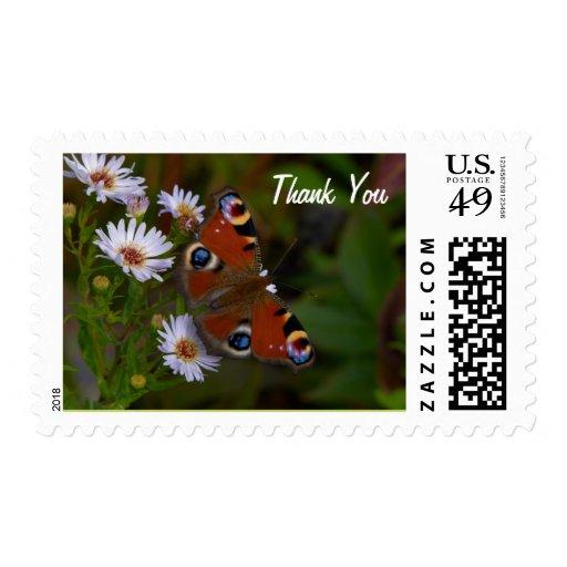 Mariposa - gracias franqueo