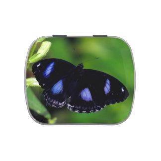 Mariposa gran Eggfly de la luna azul Jarrones De Caramelos
